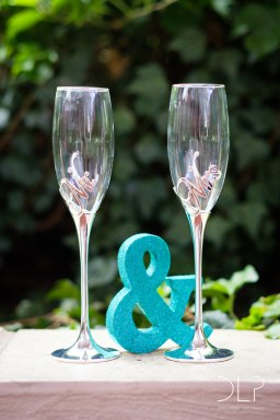 dlp-biscarini-wedding-5301