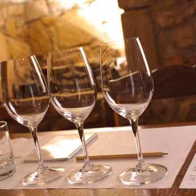 Curso teórico-práctico introducción al mundo del vino