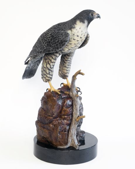 A peregrine falcon perched on a stone in the bronze 'The Nomad'