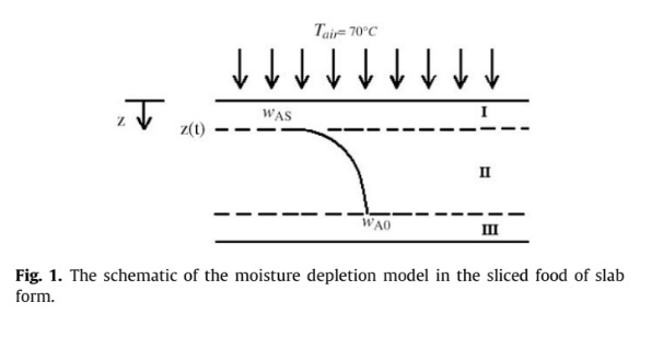 The schematic of the moisture depletion model in the sliced food of slab form