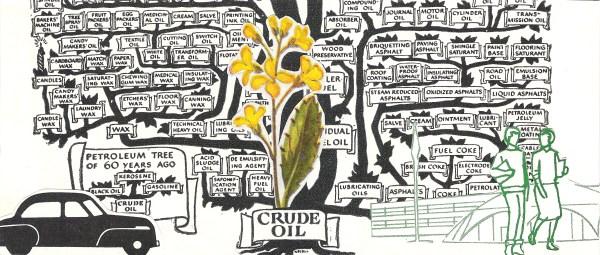 Petroleum Tree Pt. 2   The Ponzi Schematics