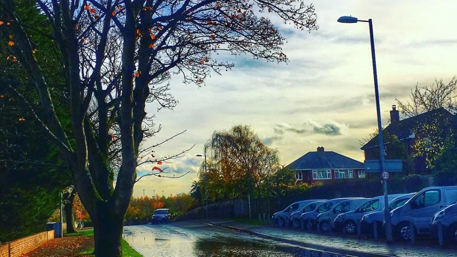 Storm agnus in Exeter