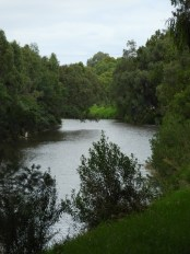 The River Yarra