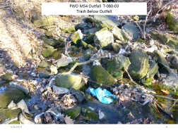 Trash Below PWD outfall T-080-03