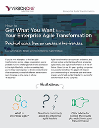 How to Get What You Want from Your Enterprise Agile Transformation