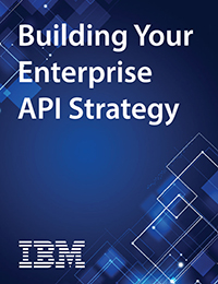 Building an Enterprise API Strategy