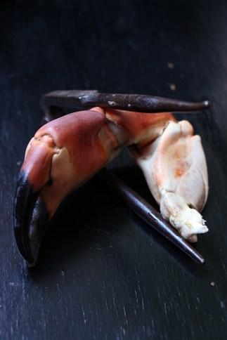 one-pot-pasta-au-crabe-devorezmoi-06