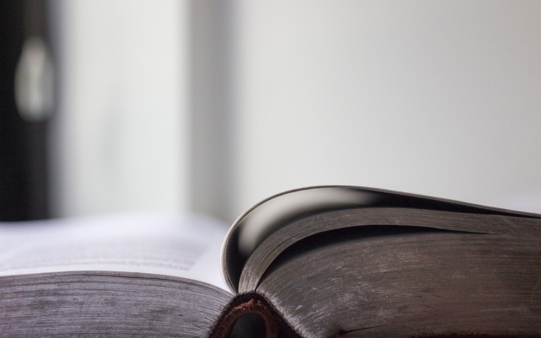 Daily Devotion – Wisdom Calls Out
