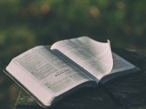 open bible to psalms