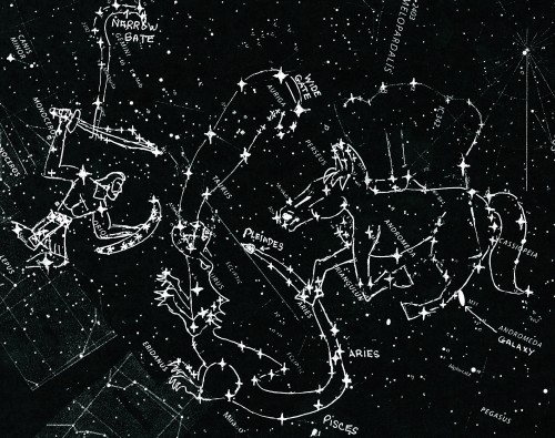 star-charts winter constellations