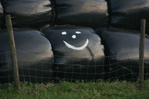 http://commons.wikimedia.org/wiki/File:Happy_silage_bale.jpg