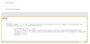 debug-wordpress-theme-mod-front
