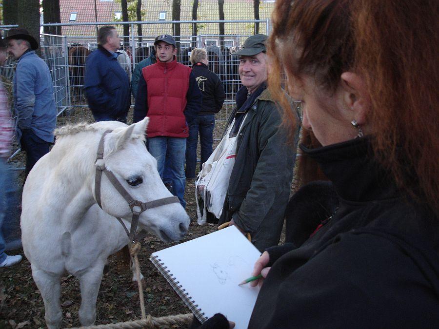 zuidlaardermarkt Horse fair art 14