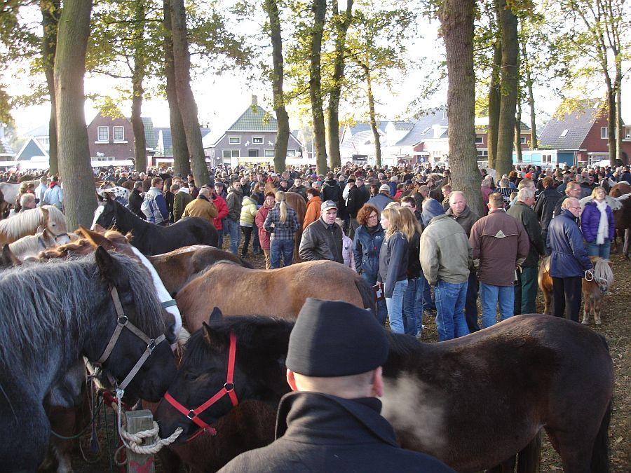 zuidlaardermarkt Horse fair art 29