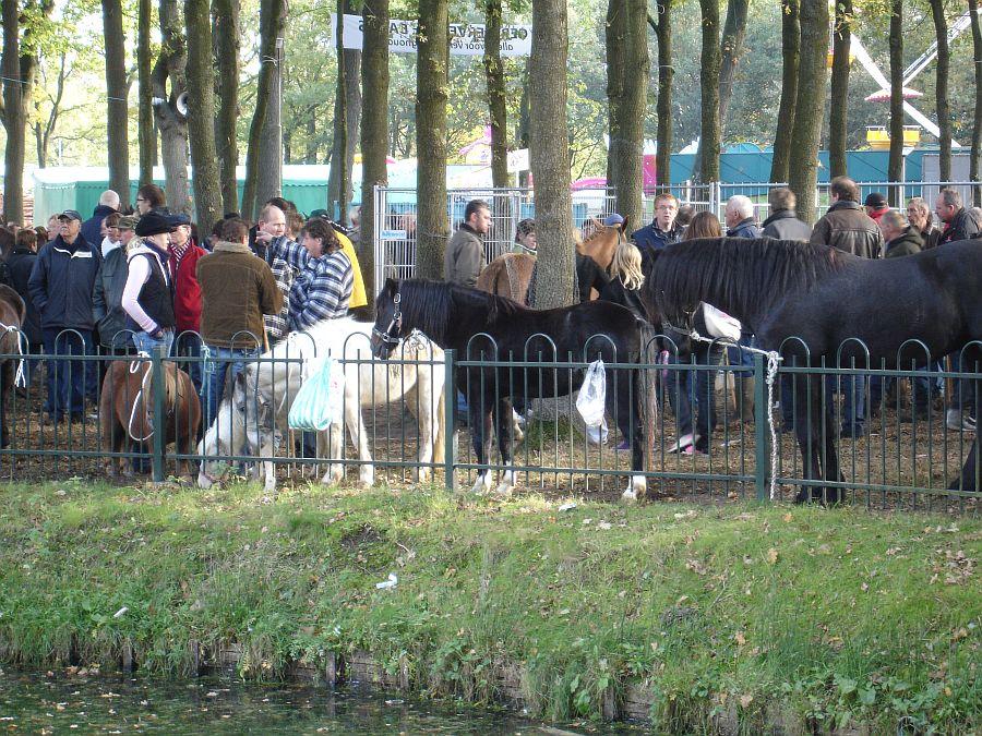 zuidlaardermarkt Horse fair art 46
