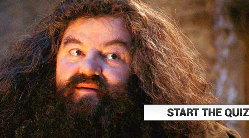Rubeus Hagrid Quiz