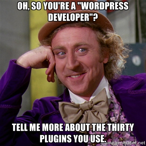Clients cum WordPress Developers