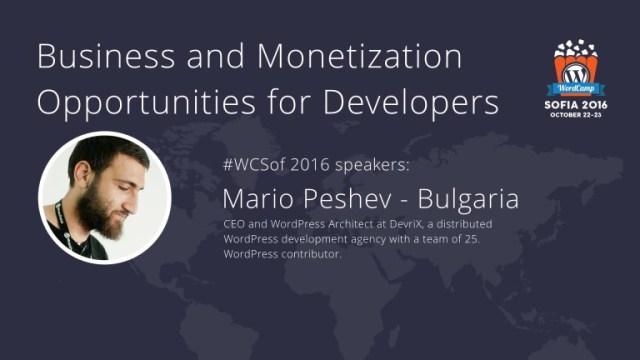 Business and Monetization Opportunities WordPress