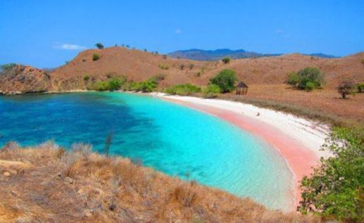 Pink Beach,Pulau Komodo