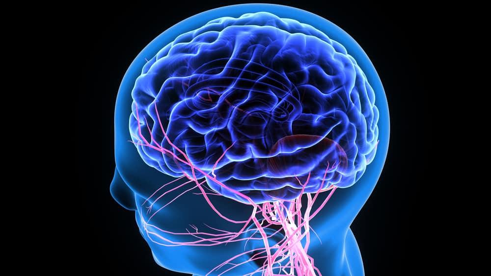 Tips Menjaga Kesehatan Otak yang Mudah Dilakukan