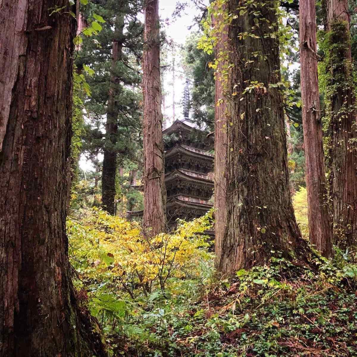 The Five Story Pagoda on Mt. Haguro