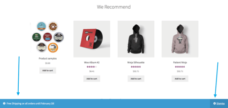 woocommerce-customizer-storenotice-display-usage