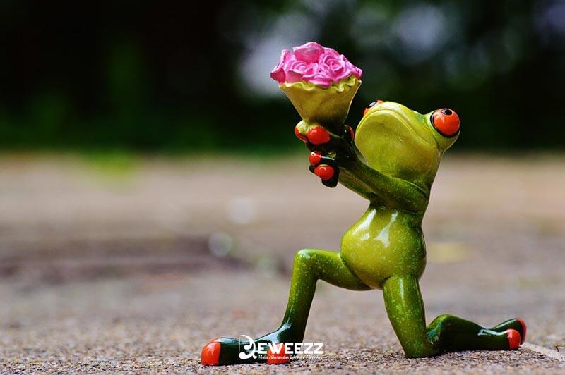 pantun cinta romantis untuk pacar tersayang