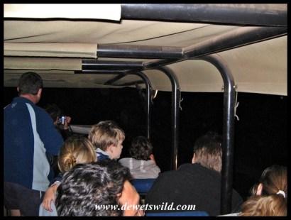 Satara Guided Night Drive