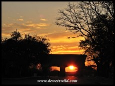 Ready to get underway; sunrise at Phalaborwa Gate