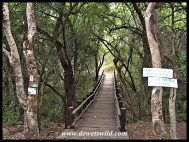 Walking trail through the woodland at Forever Loskop