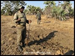 Interpreting a dung-midden