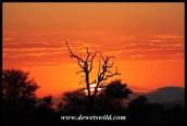 Sweni sunrise