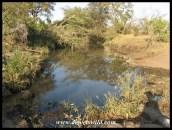 Pool in the Gwini