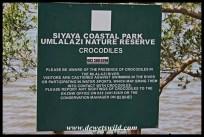 Beware the crocodiles!