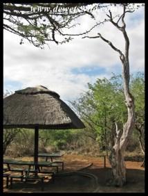 Lower Sabie picnic area