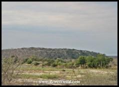 Olifants' clifftop location