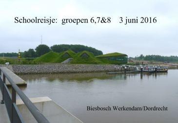 schoolreisje biesbosch