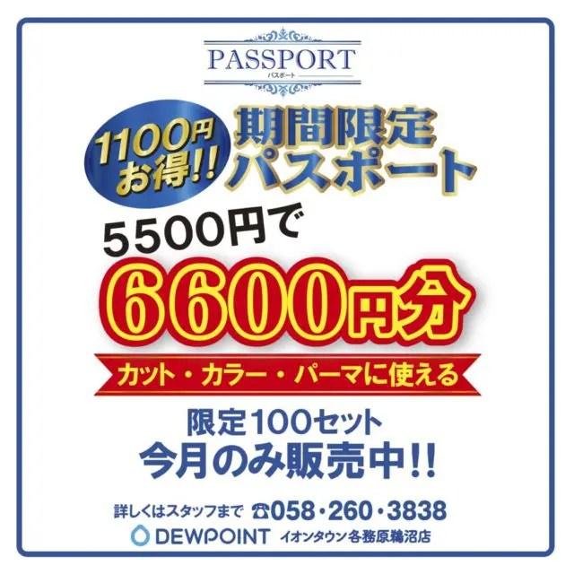 パスポートチケット