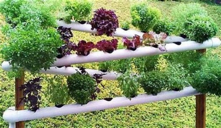Easy DIY PVC Pipe Garden Projects