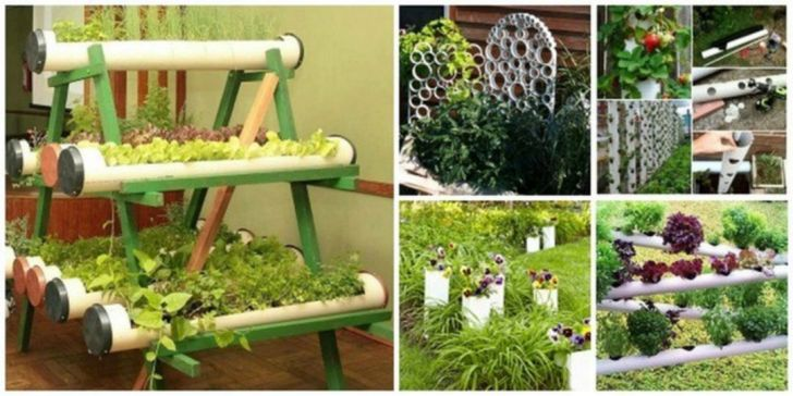 Hydroponics PVC Pipe Garden Projects
