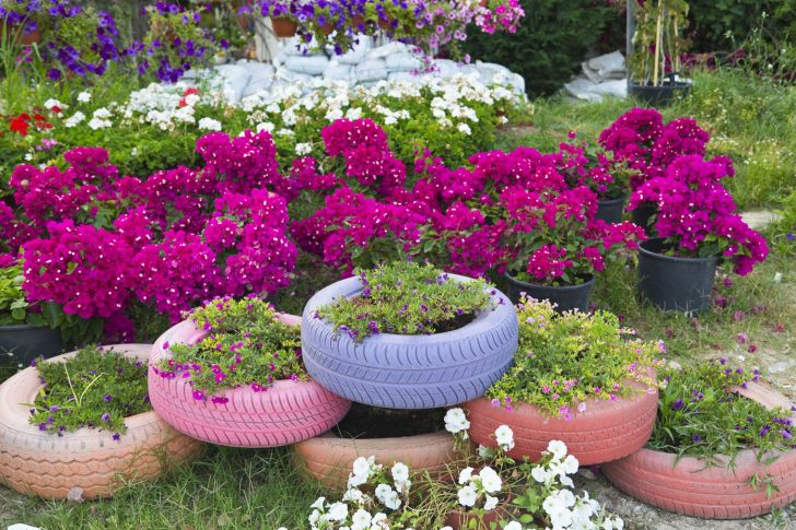 Fascinating Flower Tire Planters