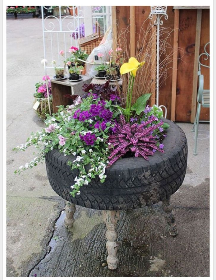 Flowers in old Tires