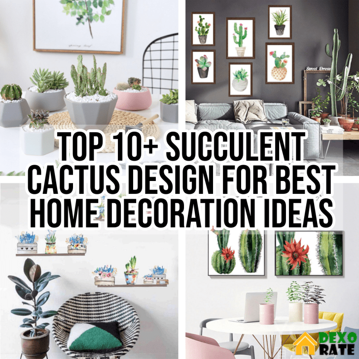 Top 10 Succulent Cactus Design For Best Home Decoration Ideas