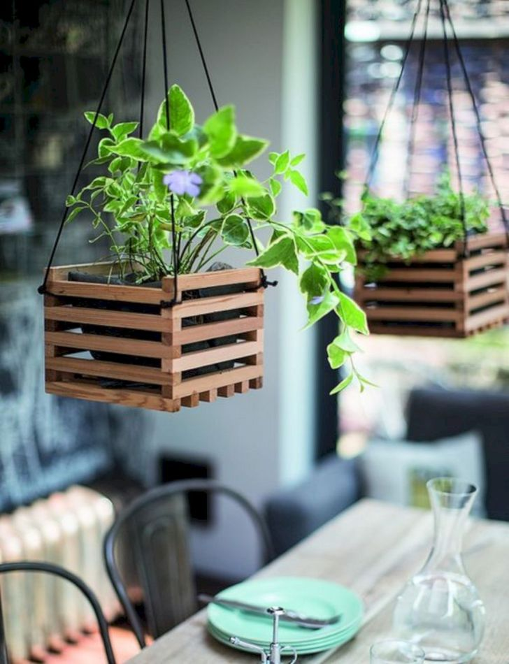 Awesome DIY Wood Indoor Plants
