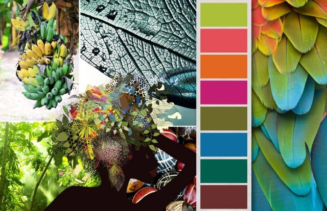 Contemporary Tropical Color schemes