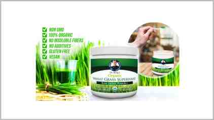 Dr. Berg's Superfood Raw Wheatgrass Juice powder