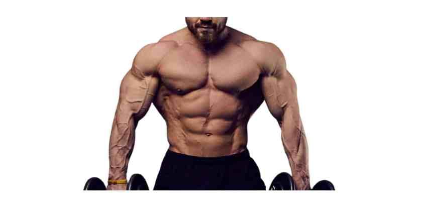 Brutal Force Abulk Muscle Building
