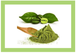 Green Coffee Bean Extract-