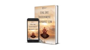 Feng Shui Environment Abundance Flow Reviews: Is It A Legit Program That Works?