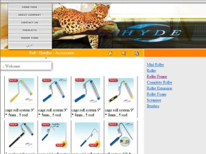 Website design Turkey